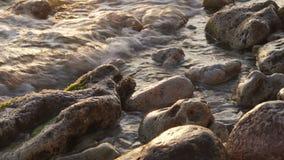 Ο άσπρος αφρός θάλασσας που προέρχεται από τον ήρεμο ωκεανό καλύπτει την αμμώδη ακτή στο ηλιοβασίλεμα απόθεμα βίντεο