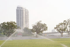 Ο άλτης πότιζε τις εγκαταστάσεις στον κήπο Στοκ Εικόνες