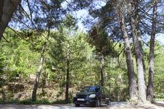Οδήγηση από τις δασικές διαδρομές Στοκ εικόνες με δικαίωμα ελεύθερης χρήσης