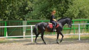 Οδήγηση ενός αλόγου φιλμ μικρού μήκους