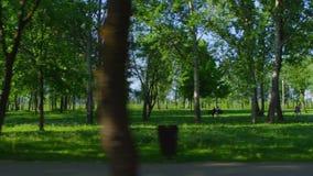Οδήγηση κοντά στο πάρκο απόθεμα βίντεο