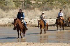 Οδήγηση πλατών αλόγου στην έρημο Στοκ Εικόνα