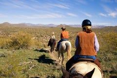 Οδήγηση πλατών αλόγου στην έρημο Στοκ φωτογραφία με δικαίωμα ελεύθερης χρήσης