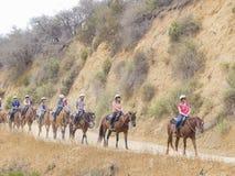 Οδήγηση πλατών αλόγου στο ίχνος λόφων Hollywood Στοκ Εικόνες