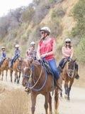 Οδήγηση πλατών αλόγου στο ίχνος λόφων Hollywood Στοκ εικόνα με δικαίωμα ελεύθερης χρήσης