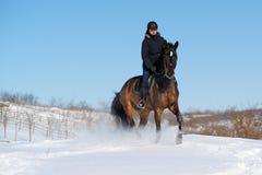 Οδήγηση πλατών αλόγου το χειμώνα Στοκ φωτογραφία με δικαίωμα ελεύθερης χρήσης