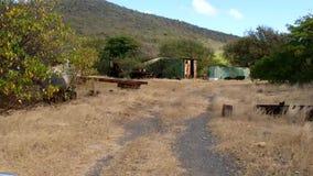 Οδήγηση πλαϊνή στην προσήνεμη πλευρά ενός νησιού στις Γρεναδίνες φιλμ μικρού μήκους