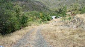 Οδήγηση πλαϊνή στην προσήνεμη πλευρά ενός νησιού στις Γρεναδίνες απόθεμα βίντεο