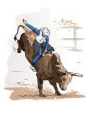 Οδήγηση του Bull κάουμποϋ Στοκ Φωτογραφία