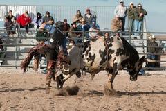 Οδήγηση του Bull ροντέο κάουμποϋ Στοκ Φωτογραφίες