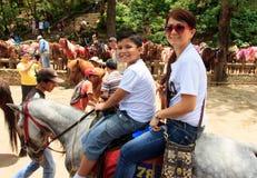 Οδήγηση των αλόγων στην πόλη Baguio, Φιλιππίνες στοκ φωτογραφίες