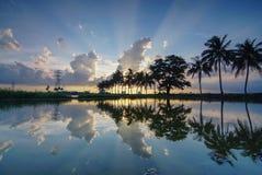 Ο ήλιος αντανάκλασης ακτινοβολεί μέσω του σύννεφου πίσω του δέντρου καρύδων Στοκ φωτογραφία με δικαίωμα ελεύθερης χρήσης