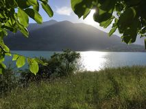 Ο ήλιος καίγεται στα πράσινες φύλλα και τη λίμνη Στοκ Φωτογραφία