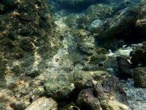 Ο ήλιος λάμπει στις πέτρες σκοπέλων κάτω από το νερό Στοκ Εικόνες