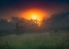 Ο ήλιος αύξησης πέρα από το hlane-βασιλικό εθνικό πάρκο στοκ εικόνα