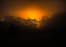 Ο ήλιος αύξησης πέρα από το hlane-βασιλικό εθνικό πάρκο στοκ φωτογραφία με δικαίωμα ελεύθερης χρήσης