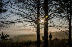 Ο ήλιος που λάμπει στο τοπίο βουνών στοκ εικόνες