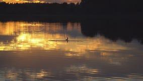 Ο ήλιος που θέτει πέρα από τη λίμνη φιλμ μικρού μήκους