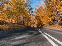 Ο ήλιος, πτώση, ξύλο, δρόμος και το σπίτι Στοκ εικόνα με δικαίωμα ελεύθερης χρήσης