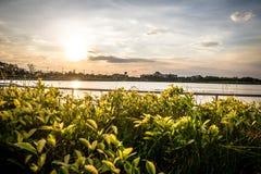 Ο ήλιος Στοκ εικόνα με δικαίωμα ελεύθερης χρήσης