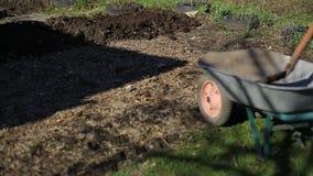 Ο αγρότης φέρνει το έδαφος wheelbarrow για τη φύτευση των οργανικών και φιλικών προς το περιβάλλον λαχανικών Εργασία απόθεμα βίντεο