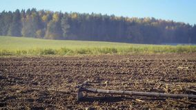 Ο αγρότης χειρίζεται το έδαφος με μια σκαπάνη απόθεμα βίντεο