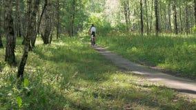 Ο αθλητής οδηγά ένα ποδήλατο μέσω του δάσους σε μια όμορφη ηλιόλουστη ημέρα απόθεμα βίντεο