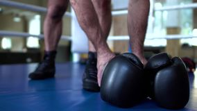 Ο αθλητικός τύπος παίρνει τα εγκιβωτίζοντας γάντια στα χέρια απόθεμα βίντεο