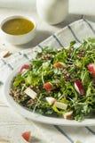 Ο ακατέργαστοι υγιείς οργανικοί Kale και σαλάτα της Apple Στοκ εικόνες με δικαίωμα ελεύθερης χρήσης