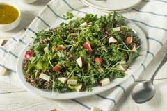 Ο ακατέργαστοι υγιείς οργανικοί Kale και σαλάτα της Apple Στοκ Φωτογραφία