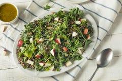 Ο ακατέργαστοι υγιείς οργανικοί Kale και σαλάτα της Apple Στοκ Εικόνες