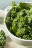Ο ακατέργαστος πράσινος οργανικός σγουρός Kale Στοκ εικόνες με δικαίωμα ελεύθερης χρήσης