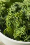 Ο ακατέργαστος πράσινος οργανικός σγουρός Kale Στοκ Εικόνες