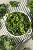 Ο ακατέργαστος πράσινος οργανικός σγουρός Kale Στοκ φωτογραφίες με δικαίωμα ελεύθερης χρήσης
