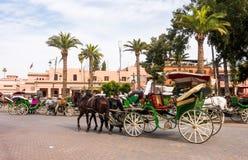 Ο αμαξάς χαλαρώνει στη horse-drawn μεταφορά του Στοκ Εικόνα