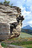 Ο αμερικανικός απότομος βράχος καταπίνει Στοκ φωτογραφία με δικαίωμα ελεύθερης χρήσης