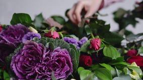 Ο ανθοκόμος βάζει τα όμορφα τριαντάφυλλα για τη ρύθμιση μιας σύγχρονης ανθοδέσμης απόθεμα βίντεο