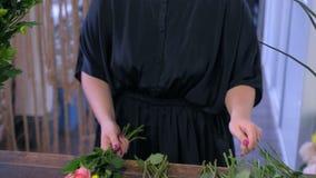Ο ανθοκόμος γυναικών κάνει μια ανθοδέσμη των ζωηρόχρωμων τριαντάφυλλων στο ανθοπωλείο, δίνει την κινηματογράφηση σε πρώτο πλάνο απόθεμα βίντεο