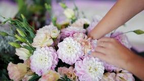 Ο ανθοκόμος κάνει την όμορφη ανθοδέσμη των ρόδινων λουλουδιών Dahilas για το γαμήλιο ντεκόρ απόθεμα βίντεο