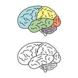Ο ανθρώπινος εγκέφαλος με τα μπαλώματα Στοκ εικόνα με δικαίωμα ελεύθερης χρήσης