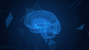 Ο ανθρώπινος εγκέφαλος υπό μορφή μορίων και πλέγματος Αφηρημένο γεωμετρικό υπόβαθρο με την κίνηση των γραμμών, των σημείων και τω ελεύθερη απεικόνιση δικαιώματος