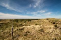 Ολλανδική παράκτια προστασία αμμόλοφων κοντά στο Πέτεν, het Zwanenwater Στοκ Φωτογραφία