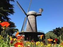 Ολλανδικός ανεμόμυλος με τις τουλίπες στο Σαν Φρανσίσκο στοκ εικόνα με δικαίωμα ελεύθερης χρήσης