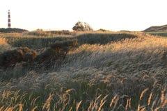 Ολλανδικός φάρος Bornrif κοντά σε Hollum στους αμμόλοφους Ameland στοκ φωτογραφίες με δικαίωμα ελεύθερης χρήσης