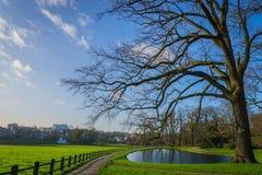 Ολλανδικό πάρκο Στοκ Φωτογραφίες