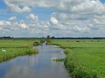Ολλανδικό τοπίο πόλντερ κάτω από έναν μπλε ουρανό Στοκ εικόνα με δικαίωμα ελεύθερης χρήσης