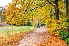 Ολλανδικό τοπίο φθινοπώρου με τα δέντρα μονοπατιών και οξιών Στοκ φωτογραφίες με δικαίωμα ελεύθερης χρήσης