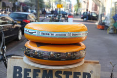 Ολλανδικό τυρί Beemster Στοκ Εικόνες