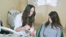 Ο αργά πυροβολώντας steadikam γιατρός οδοντιάτρων εξηγεί σαφώς στον ασθενή που η αιτία της τερηδόνας, παρουσιάζει πλαστό πρότυπο, απόθεμα βίντεο