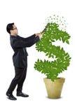 Ο αρσενικός επιχειρηματίας διαχειρίζεται το δέντρο χρημάτων Στοκ φωτογραφία με δικαίωμα ελεύθερης χρήσης